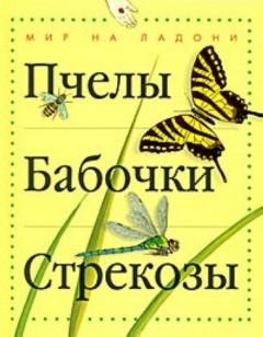 Пчелы, бабочки, стрекозы*